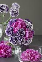 紫のトルコキキョウと芍薬の和のアレンジメント