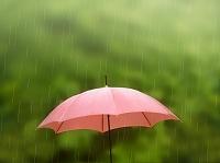 梅雨 雨の中の傘