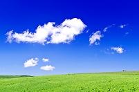 北海道 草原の丘と流れ雲