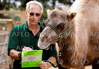 ロンドン動物園恒例 動物の身体測定