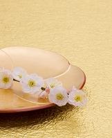 金紙と金盆と梅