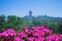 中国 江蘇省 無錫市 錫恵公園