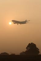 朝霧の中を着陸するエアバスA330 ベトナム航空