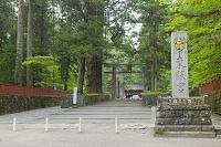 栃木県 日光東照宮の石鳥居