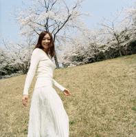 桜咲く草原で振り向く日本人女性