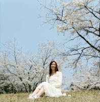 桜咲く草原に座る日本人女性