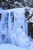 長野県 氷結した善五郎の滝とアイスクライミング