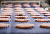 食品加工工場 ハンバーガーパテ