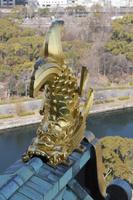 大阪府 大阪市 大阪城公園 大阪城天守閣のシャチホコ