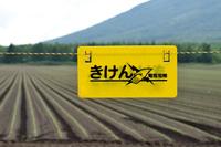 北海道 喜茂別町 畑を害獣から守る電気柵