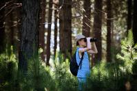 森で双眼鏡を覗く男の子
