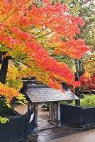 秋田県 角館武家屋敷
