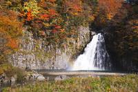 秋田県 法体の滝の紅葉
