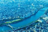 東京都 隅田川河川と住居