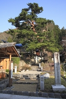 奈良井宿の水場の重要伝統的建造物群保存地区選定碑と庚申塚