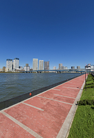 豊洲ぐるり公園の遊歩道と豊洲、晴海方面のビル群