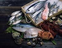 海の幸 鮮魚