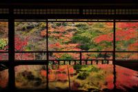 京都府 瑠璃光院 書院二階から見る瑠璃の庭の紅葉