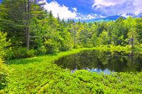 長野県 初夏の乗鞍高原牛留池と乗鞍岳