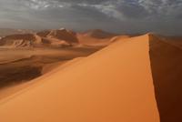 アルジェリア サハラ
