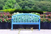 花壇のあるベンチ