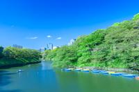 東京都 新緑の千鳥ヶ淵
