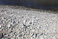 多摩川 下流の石 2009.03.02 東京都 府中市