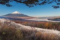 山梨県 パノラマ台より富士山