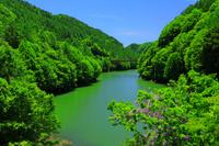 長野県 鬼無里 初夏の奥裾花ダム湖