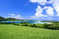 沖縄県 石垣島 川平湾