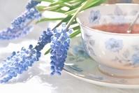 ヒヤシンスと紅茶