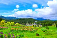 長野県 夏の池の平スキー場からの風景