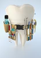 道具用ベルトを身につける大きい歯