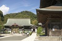 神奈川県 建長寺 唐門(左)を望む