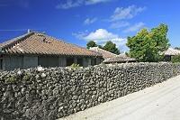 沖縄県 竹富島の石垣と赤瓦屋根のシーサー