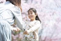 桜の前で手をつなぐ親子