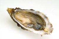 牡蠣 食材