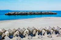 徳島県 消波ブロックと海