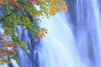 秋田県 阿仁・立又峡谷 一ノ滝と紅葉