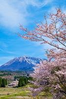 鳥取県 桜咲く日光小学校と伯耆大山
