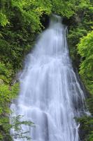 京都府 新緑の琴滝