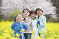 菜の花畑で並んで笑う子供たち