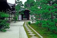 京都府 両足院