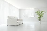 リビングに置かれたソファと観葉植物 CG