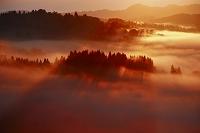 新潟県 早朝に望む星峠の雲海