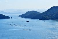 海 錦から 紀伊長島 遠望