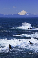 荒崎海岸の荒波と富士山
