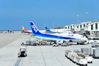 沖縄県 那覇空港 ANA B737-500