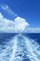 航跡と積乱雲