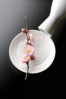 徳利と盃と梅の花